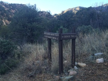 Cochise & Middlemarch Trail Signpost